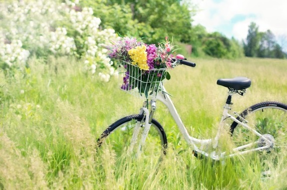 Earth Day Bicycle