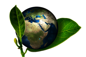 sustainable-earth-image